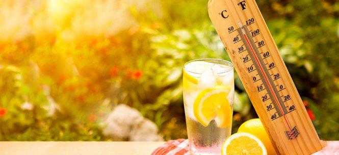 alimentos para combatir el calor